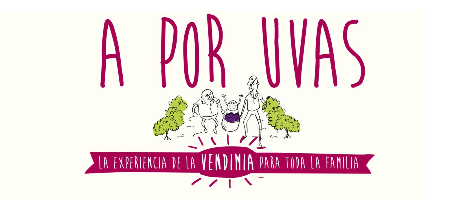 a-por-uvas-museo-del-vino
