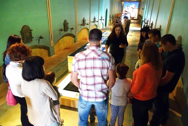 Pagos-del-rey-museo-del-b