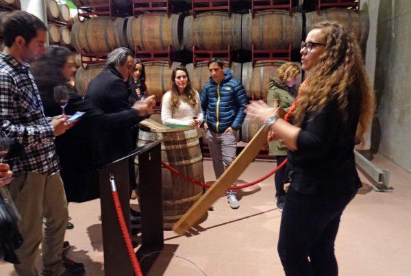 Visita enoturística a Pagos del Rey Museo del Vino