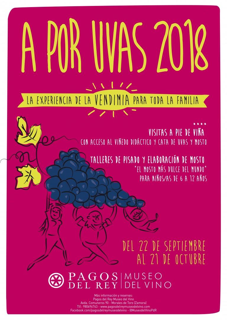 a por uvas 2018 museo del vino