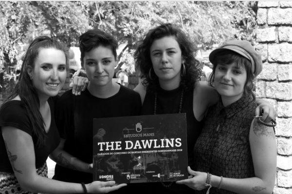 the dawlins